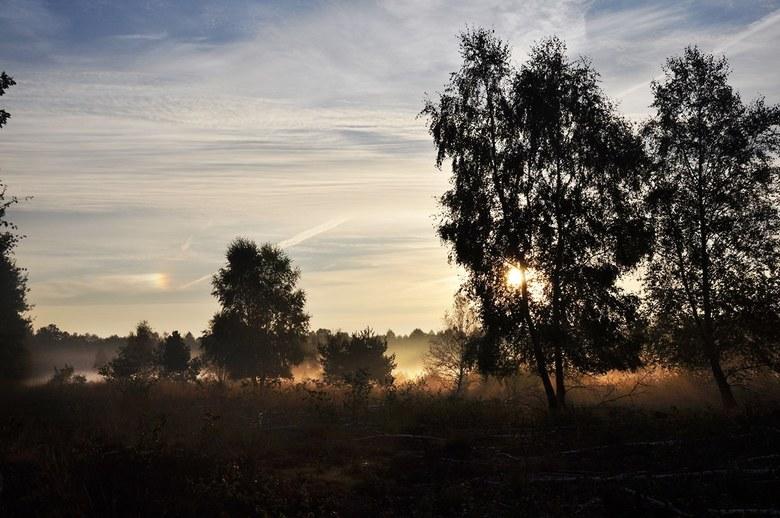 Tegenlicht maakt het mooier - Hoe de zon speelt met het landschap is altijd een mooie gezicht