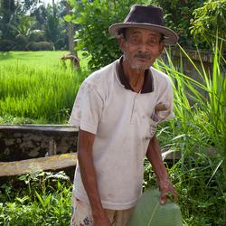 Portret Indonesische boer