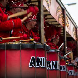 Sambaband Animoso in Aktie
