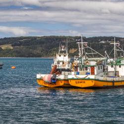 Chiloé Island Visserboten