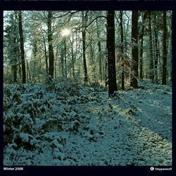 Winter 2008 I