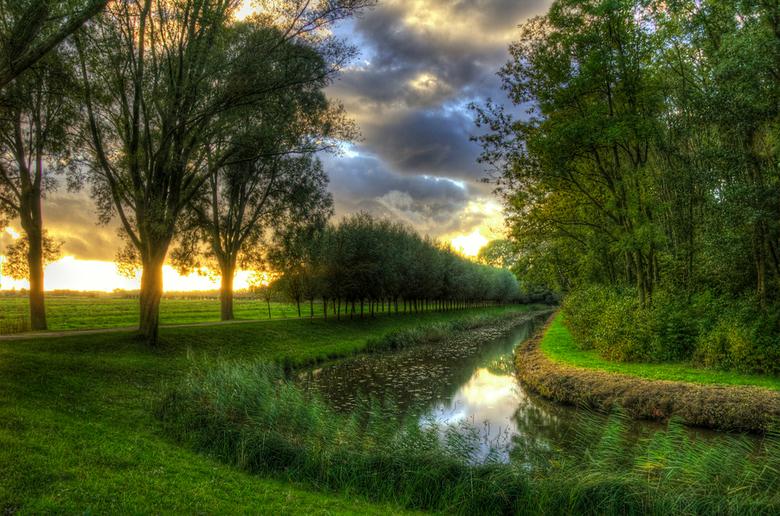 Biesbosch -