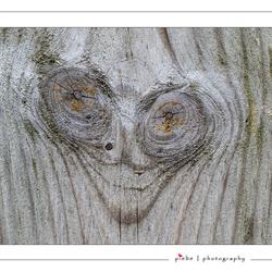 Gezicht in hout