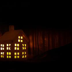 Huisje in bos