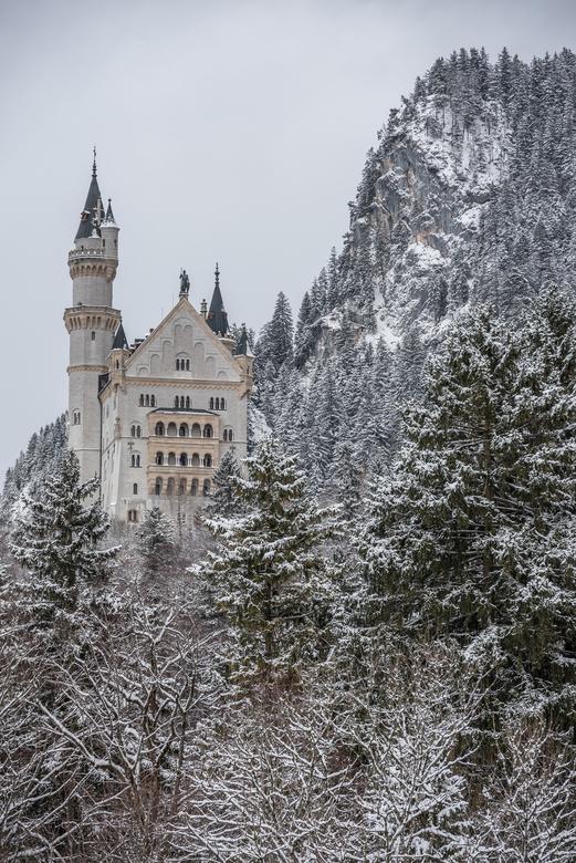 Kasteel Neuchwanstein - Neuschwanstein in de winter