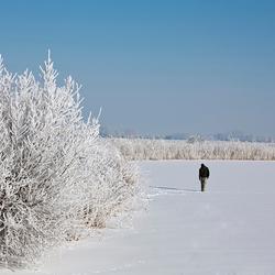 de eenzaame wandelaar