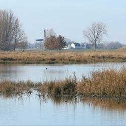 Een Hollands landschap