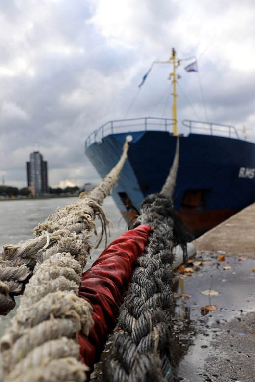The harbour of Rotterdam -