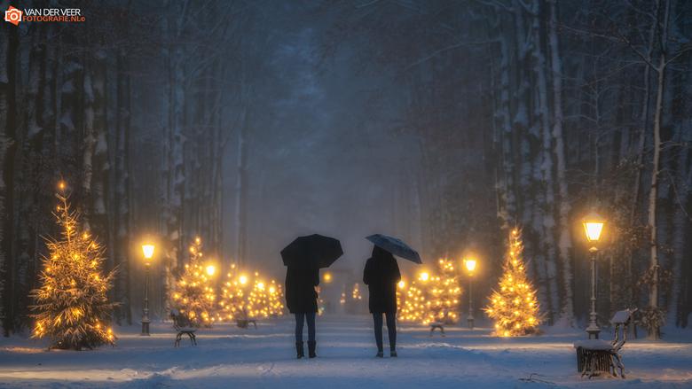 """Christmas moods - Christmas moods Paleis het Loo<br /> <br /> Groeten Frederik<br /> Volg <a href=""""http://www.vanderveerfotografie.nl"""">www.vanderve"""