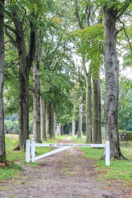 Ingang bos Doetinchem - Ingang van de Kruisbergse bossen in Doetinchem