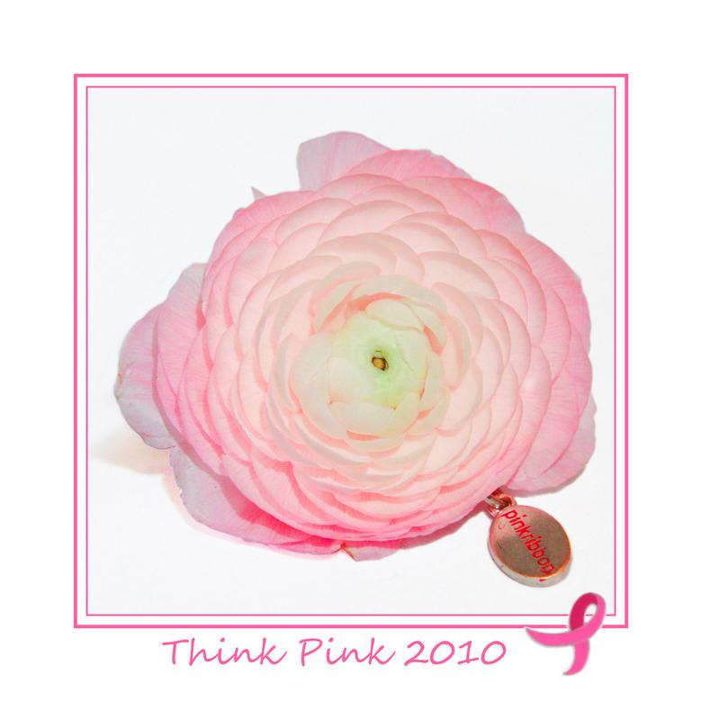 think pink 3 - Ik geloof dat nu iedereen wel kan zien wat voor serie het dit jaar wordt.<br /> Allemaal een vierkante uitsnede, high key en met een d