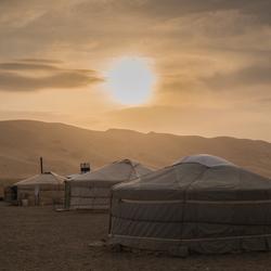 Gers bij zonsondergang