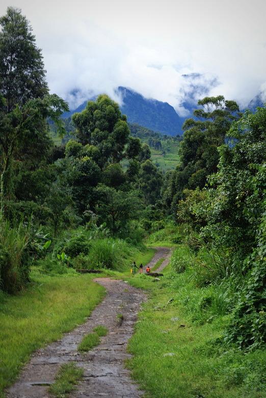 Rwenzori - Rwenzori, Uganda