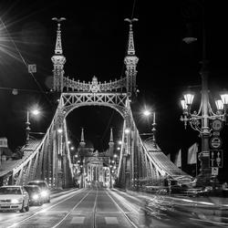 Vrijheidsbrug Budapest
