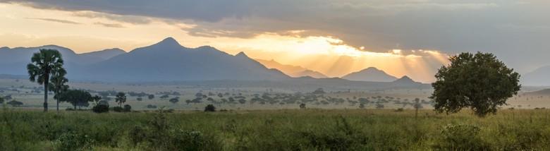 Sunrise Uganda
