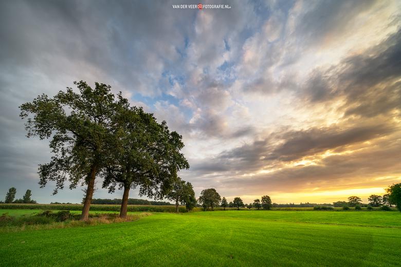 """September Glory II - Prachtig licht eind september.<br /> <br /> Groeten Frederik<br /> Volg <a href=""""http://www.vanderveerfotografie.nl"""">www.vande"""