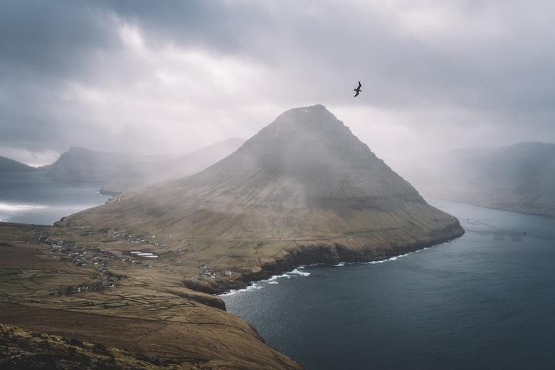 Viðareiði.