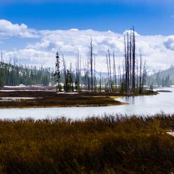 wonderen der Natuur... Yellowstone USA