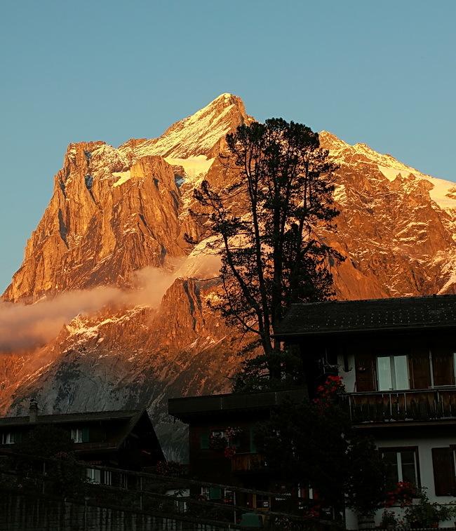 Wetterhorn - De Wetterhorn in warm avondlicht. Genomen in Grindelwald.<br /> Bedankt voor de reacties op Grindelwald.<br /> <br /> Groet Roland