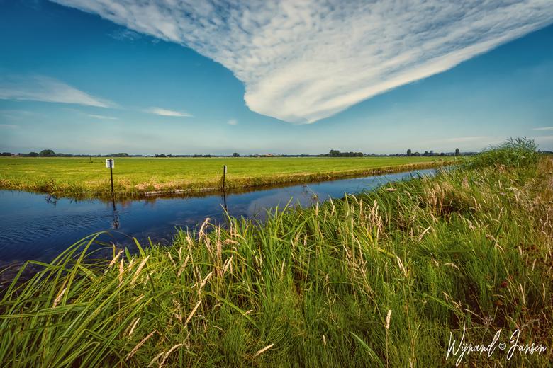 Natuur midden delfland -