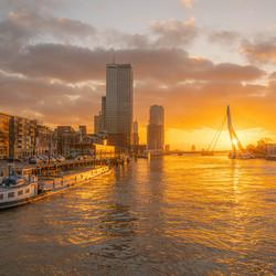 Golden hour Rotterdam