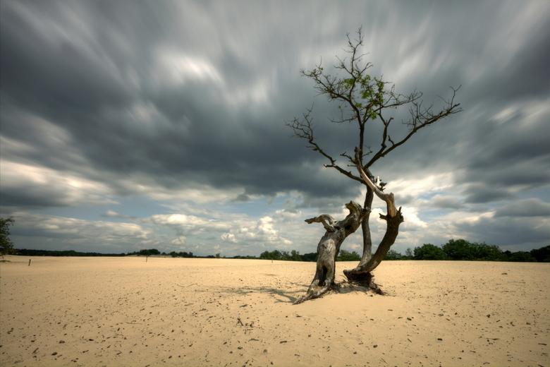 drunense duinen - 10 ND foto&#039;s gecombineerd.<br /> Het zijn 10 langere sluitertijdopnamen, achter elkaar genomen, en achter elkaar geplakt in ee