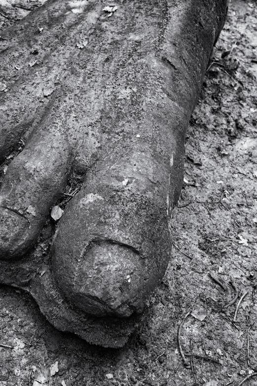 Footprint - Wandelend door een aangelegde tuin. Vraag ik mij af waar de natuur is. Er is hier wel het gevoel van groen. Maar in onze omgeving is alles