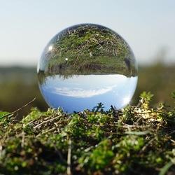 De natuur in een glazen bol
