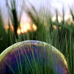 Bubble sunset