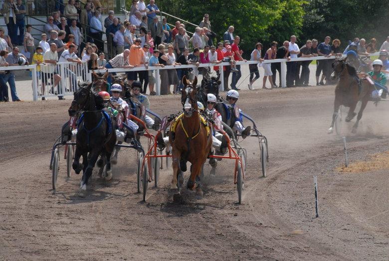 paarde koers -