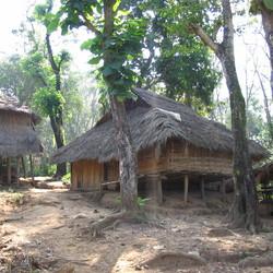 Huizen in de jungle