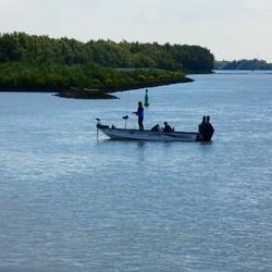 Vissen voor de haven van Rhoon op de oudemaas