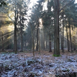 Frieslandfotografie_0514 (1132x755).jpg