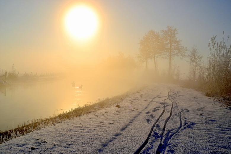 Mistige zonsopgang - Het was een prachtige zonsopgang, in een besneeuwd winterlandschap met dikke mist.