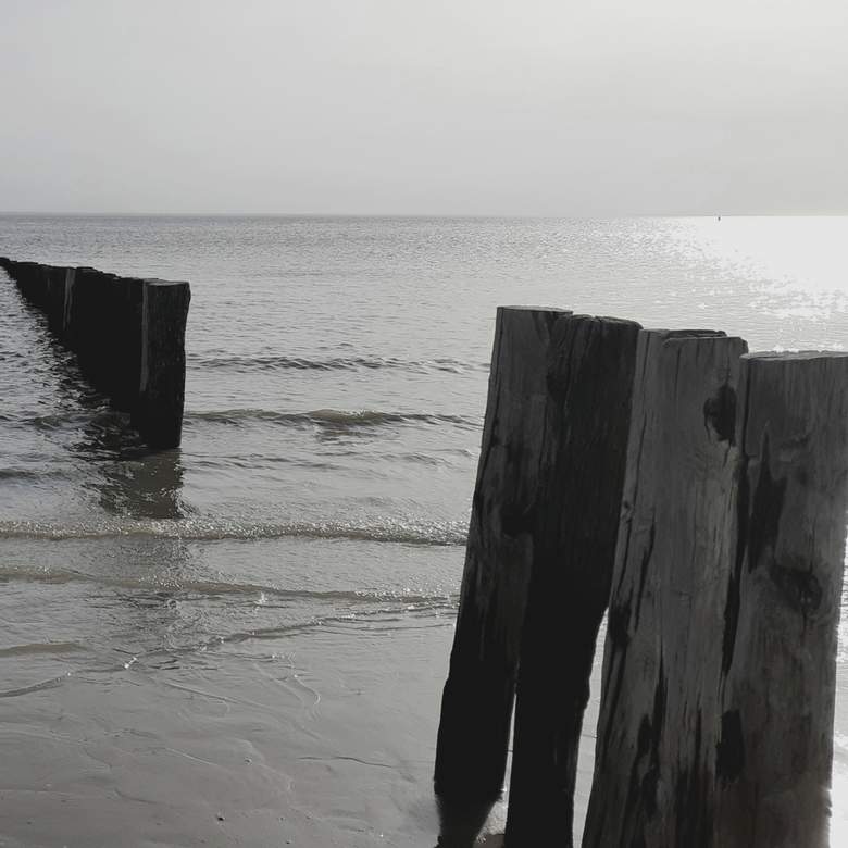 Strandpalen -