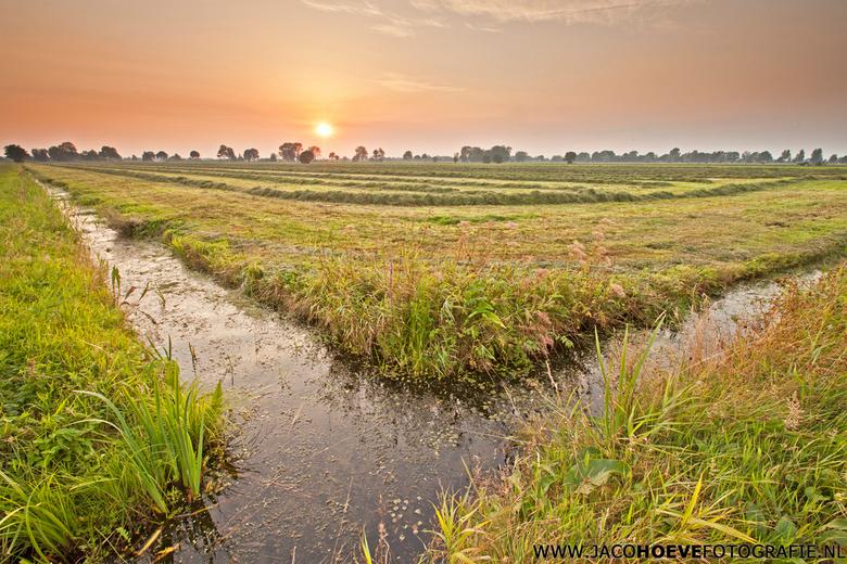 21 augustus 2013  - Grasoogst op de Rouveense weilanden.
