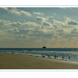 Zee, meeuwen en een schip