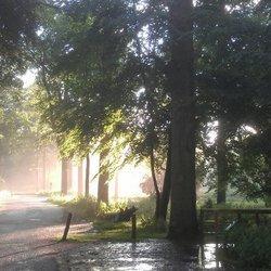 Na de regen komt zonneschijn