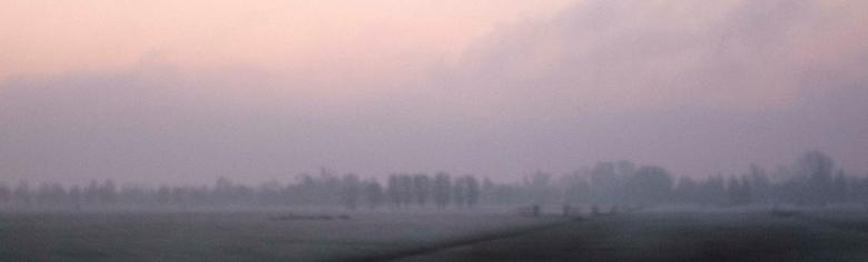 Oud hollands landschap