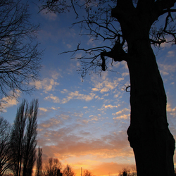 Oegstgeest zonsondergang