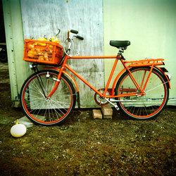 Pumpkin Bike