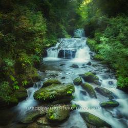 Foto van de rivier