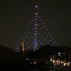 Grootste kerstboom van Nederland