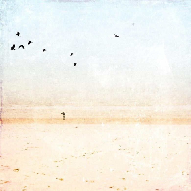 Tegen de wind in  - iPhone fotografie op het strand van Bloemendaal aan Zee. Bewerking met de app DistressedFX