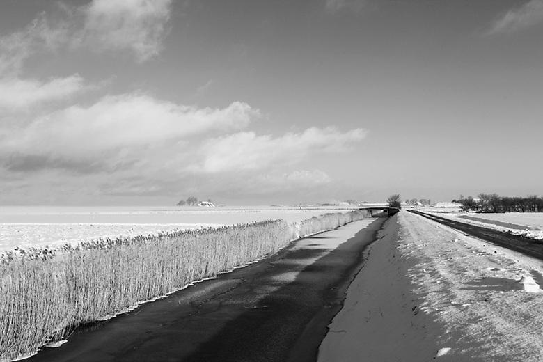 Het is koud in de polder..