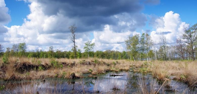 Het Veenschap - Even buiten Vriezenveen, in de buurt van het grote natuurgebied de Engbertsdijksvenen ligt nog een klein gebiedje Het Veenschap. <br /