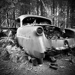 Car Graveyard 18