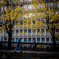 autumn @ edinburgh