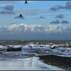 zee in winter met wind 2