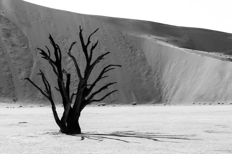 Shadows - Deadvlei, Namibie.